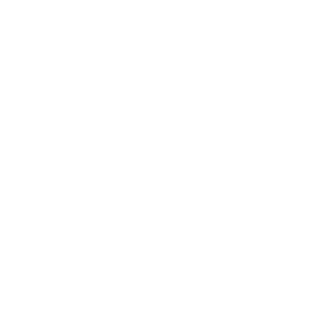 localpro plumbing icon white